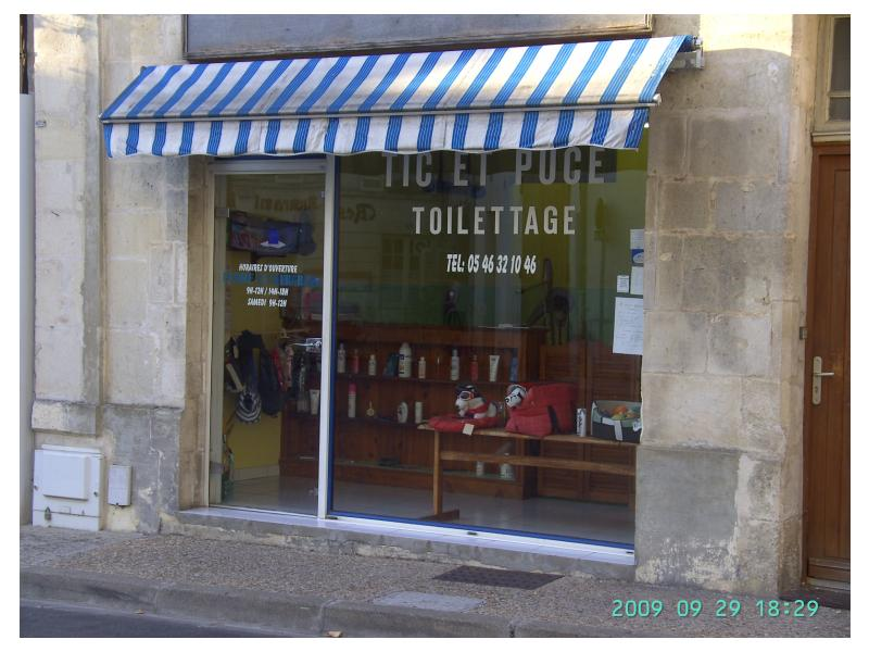 Salon de toilettage for Salon du toilettage